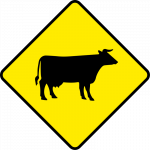 Cattle and farm animals