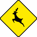 Wild animals ahead